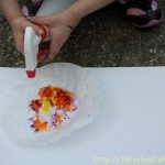 Coffee Filter Spray Art Flowers