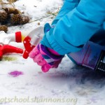 Spray Painting Snow